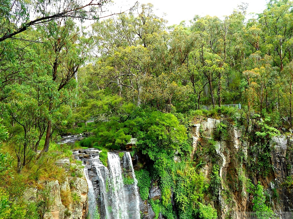 top of Queen Mary Falls