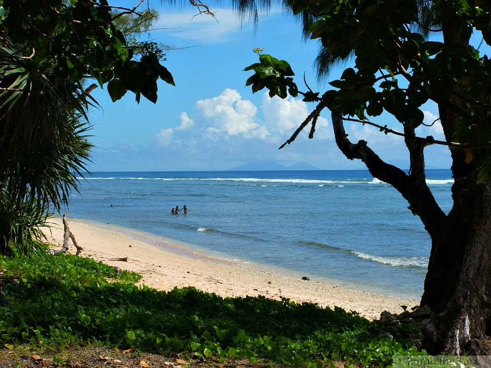 beach on Nguna island
