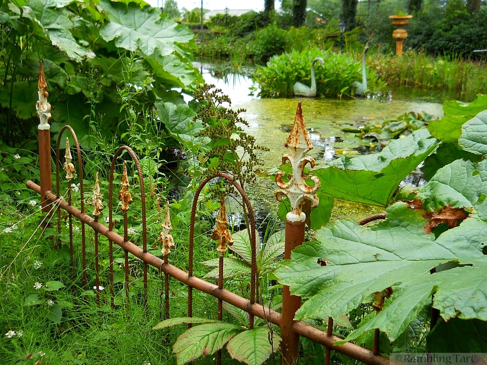 rusted iron fence