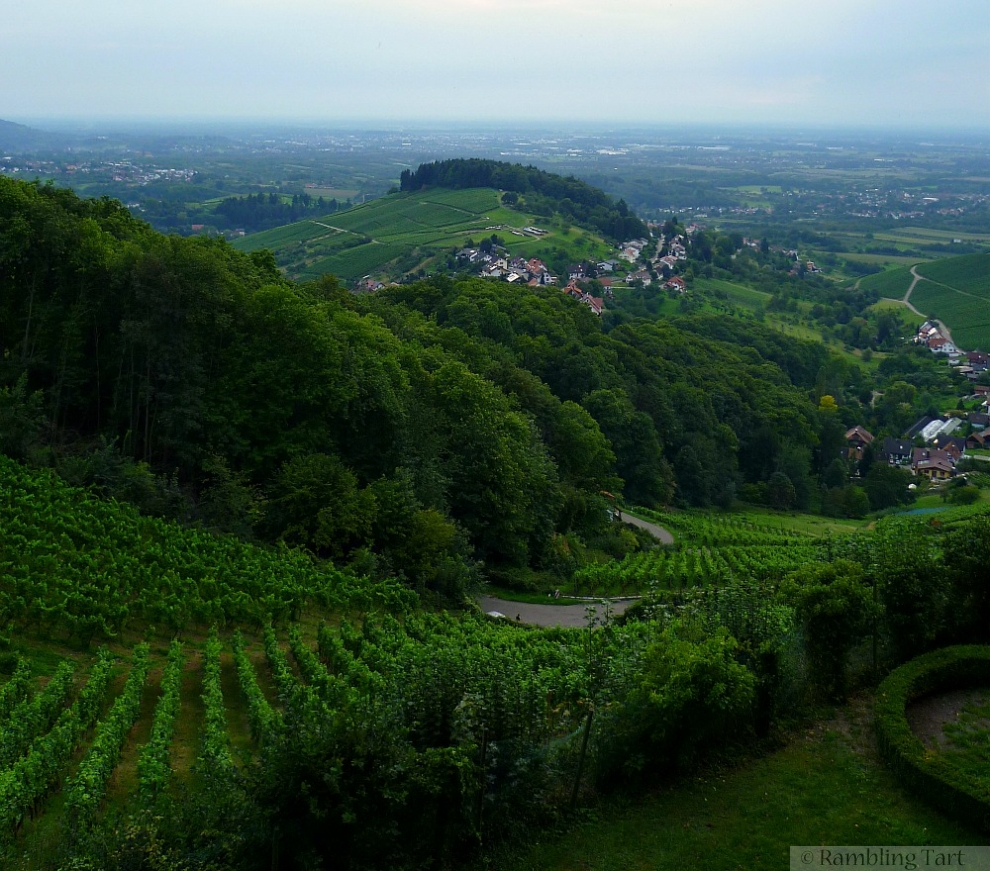 German vineyards