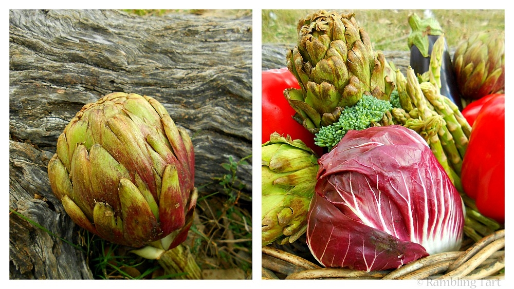 artichokes and radicchio