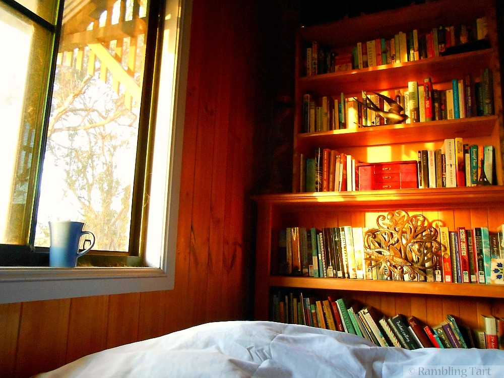 morning light on bookshelf