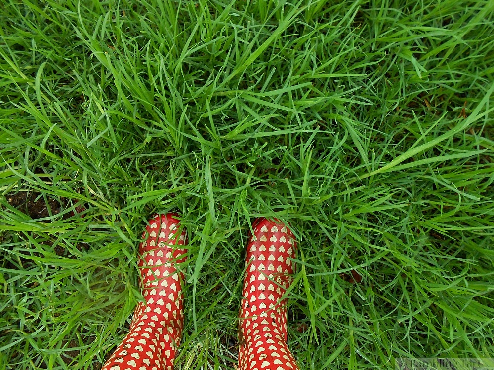 red gum boots