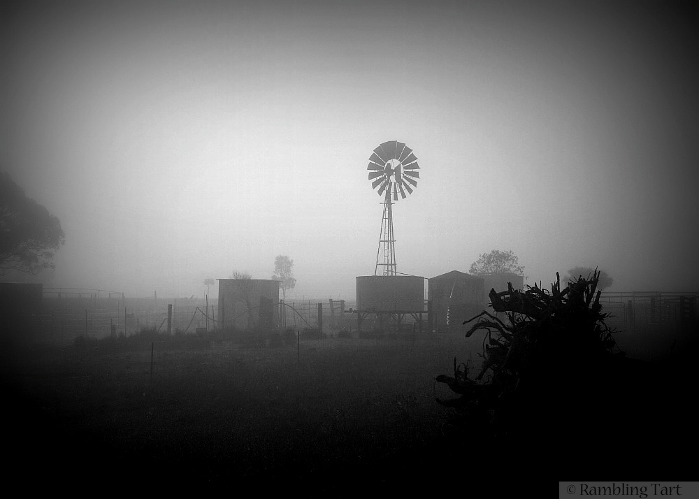 windmill in the mist