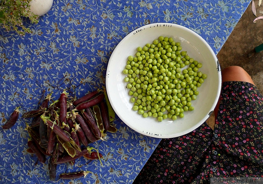 bowl of freshly shelled peas