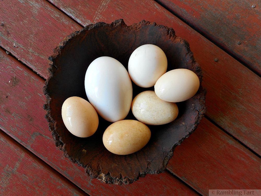 wooden bowl of eggs