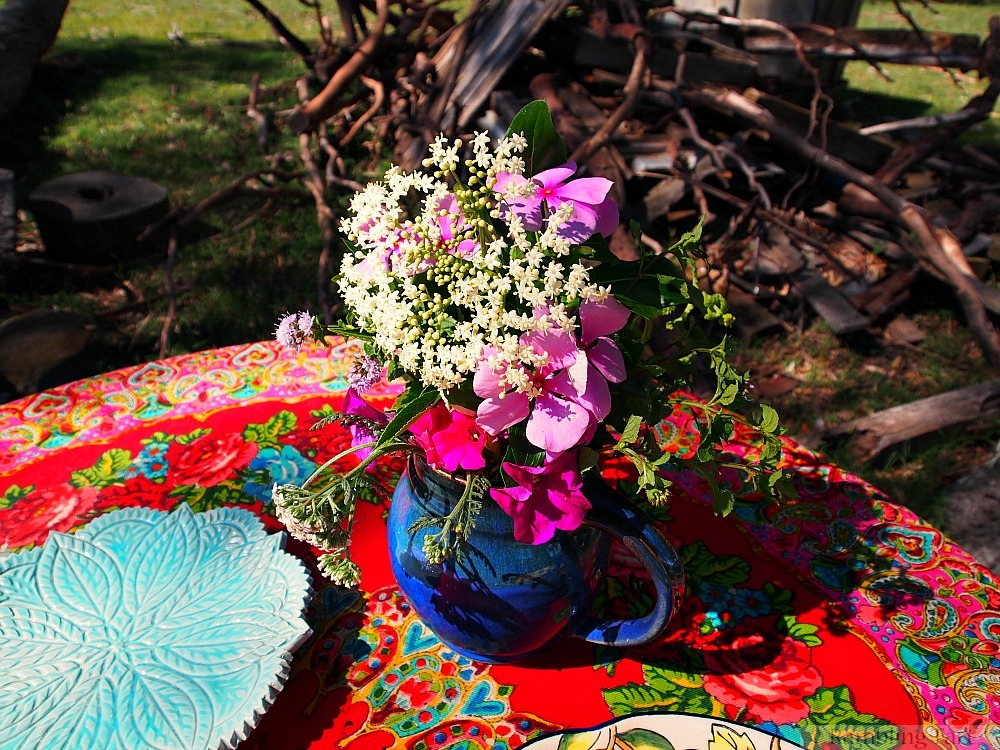 picnic flowers