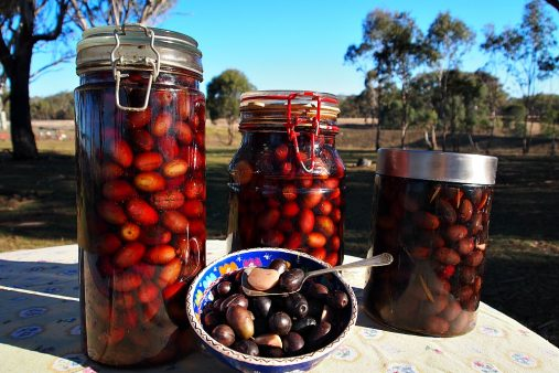 homemade olives