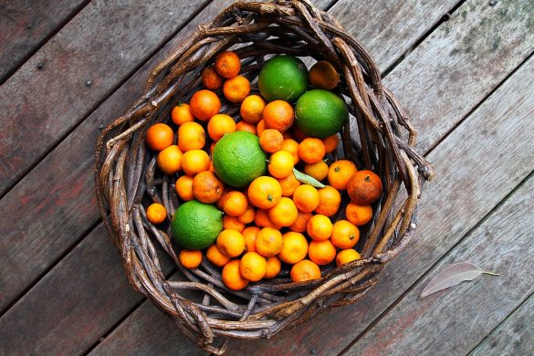 basket of kumquats