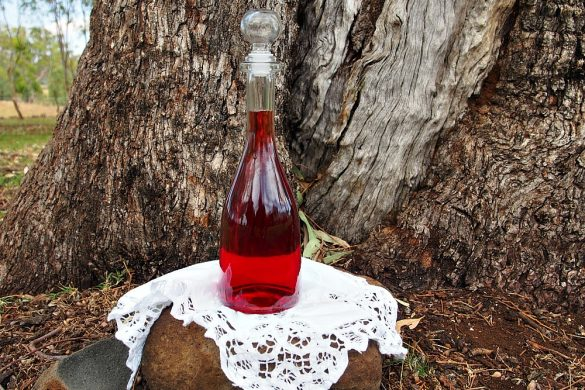 homemade strawberry liqueur