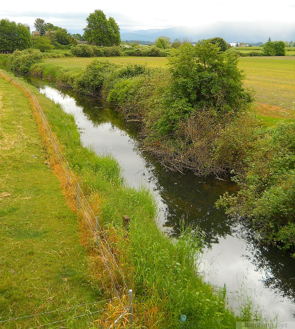 country stream