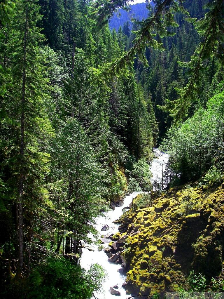 Nooksack River rapids
