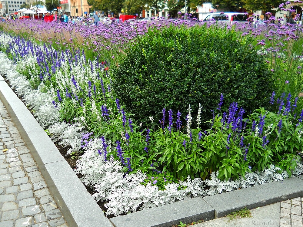 Prague flowers