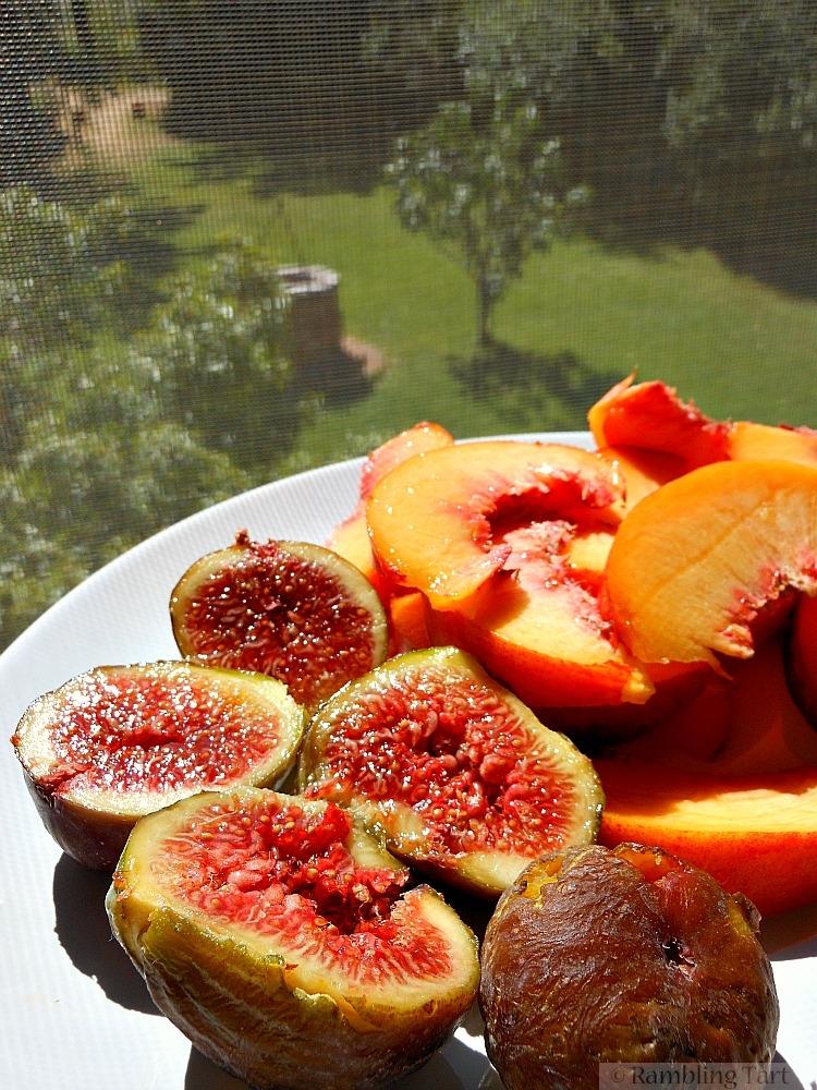 Italian figs