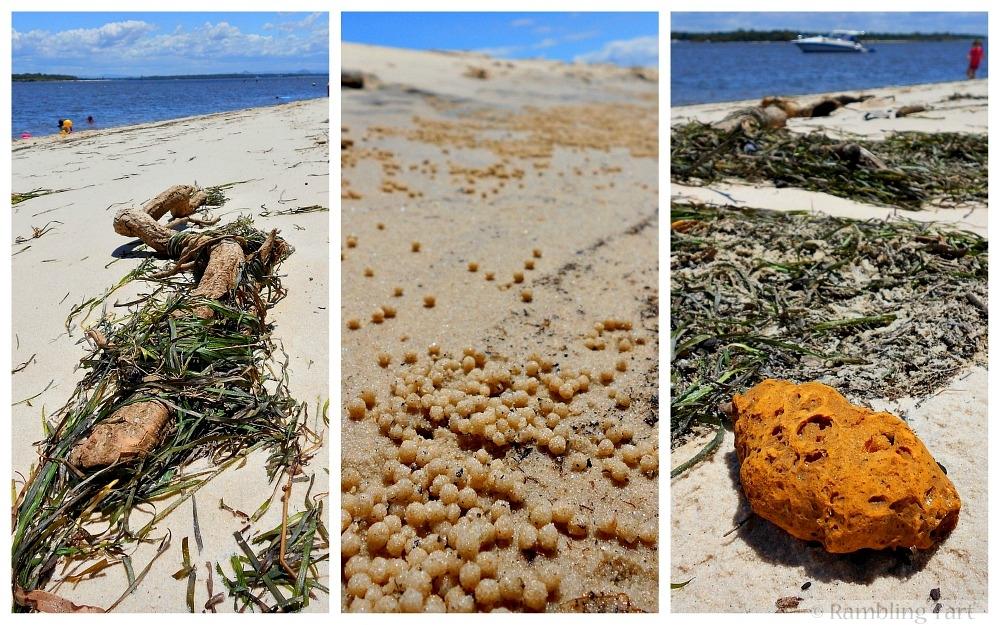 Bribie Island beaches
