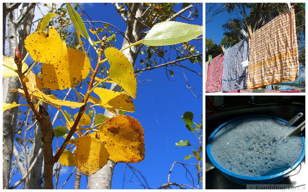 Queensland autumn weather