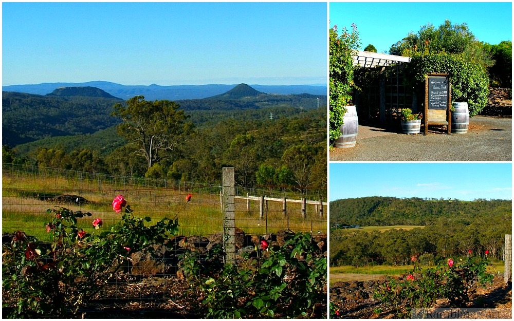 Preston Peak Winery Toowoomba