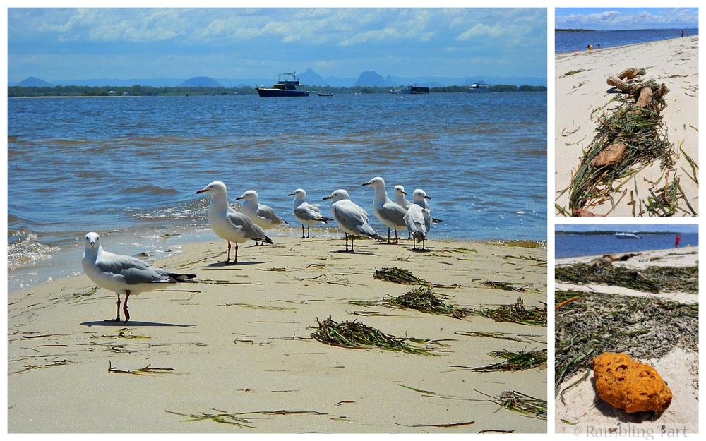 sunny Australian beach