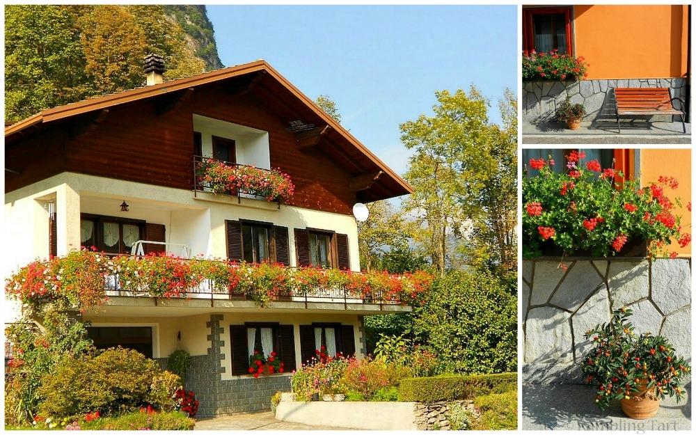 flowery alpine house