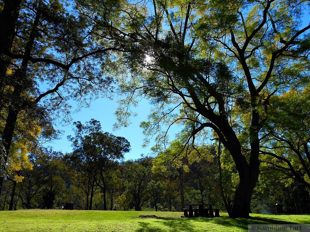 Queensland park