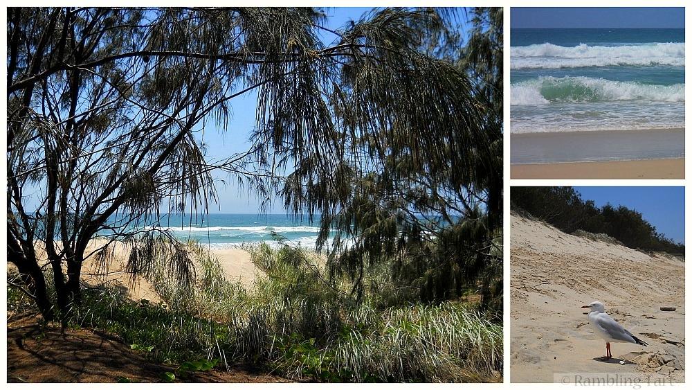 Main Beach Queensland