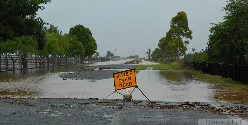 Queensland flood picture