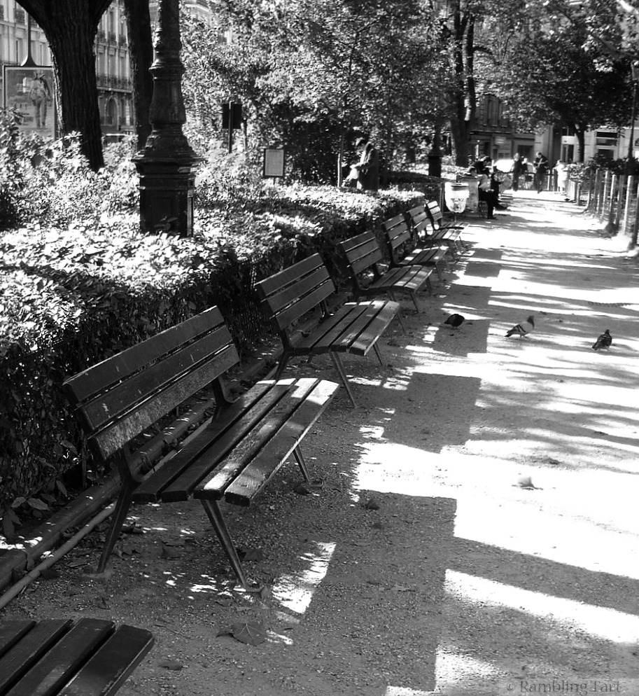 Paris park benches