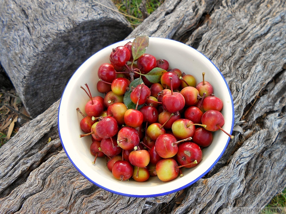 crab apples in a bowl