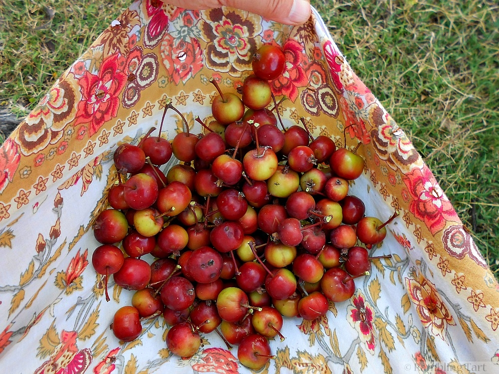 crab apples in a skirt
