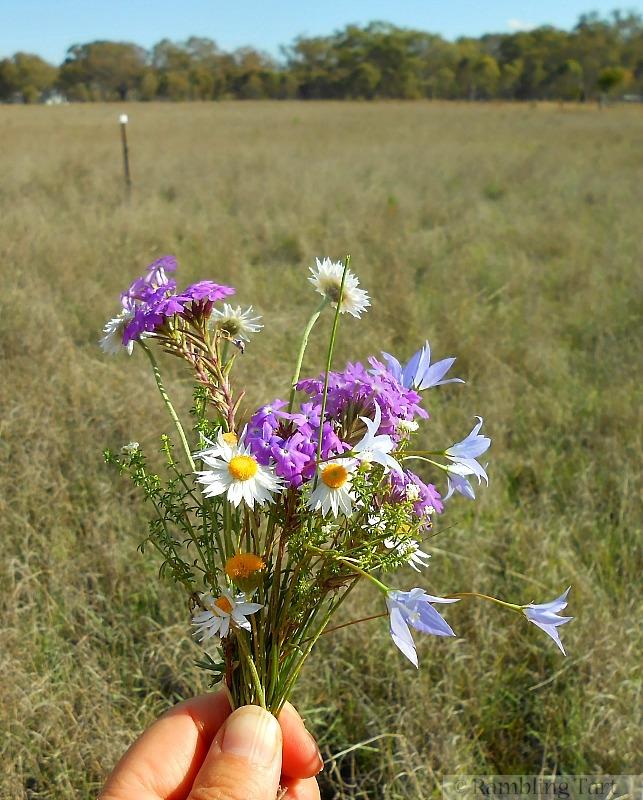 handful of wildflowers