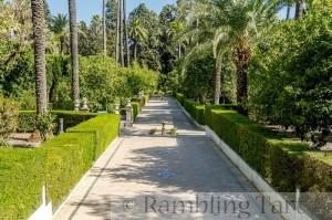 Une allée dans les jardins de l'Alcazar de Séville, Espagne by Jebulon