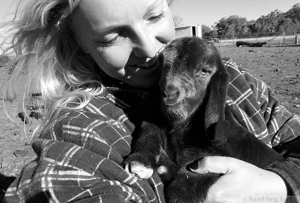 girl cuddling baby goat