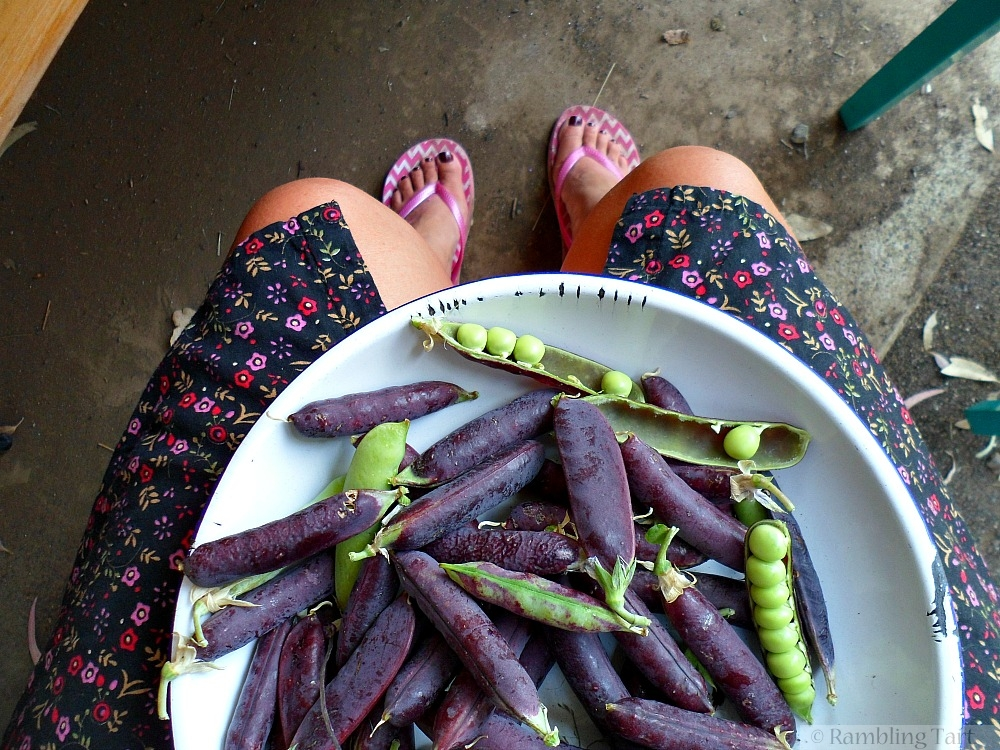 bowl of purple peas