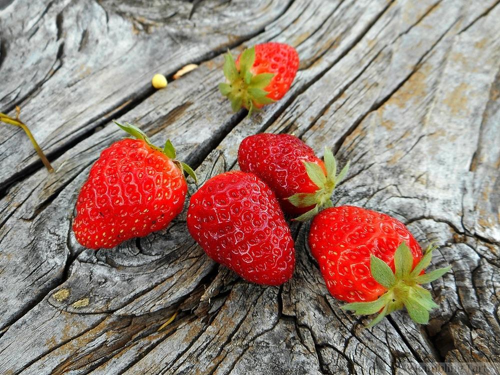 strawberries on old wood