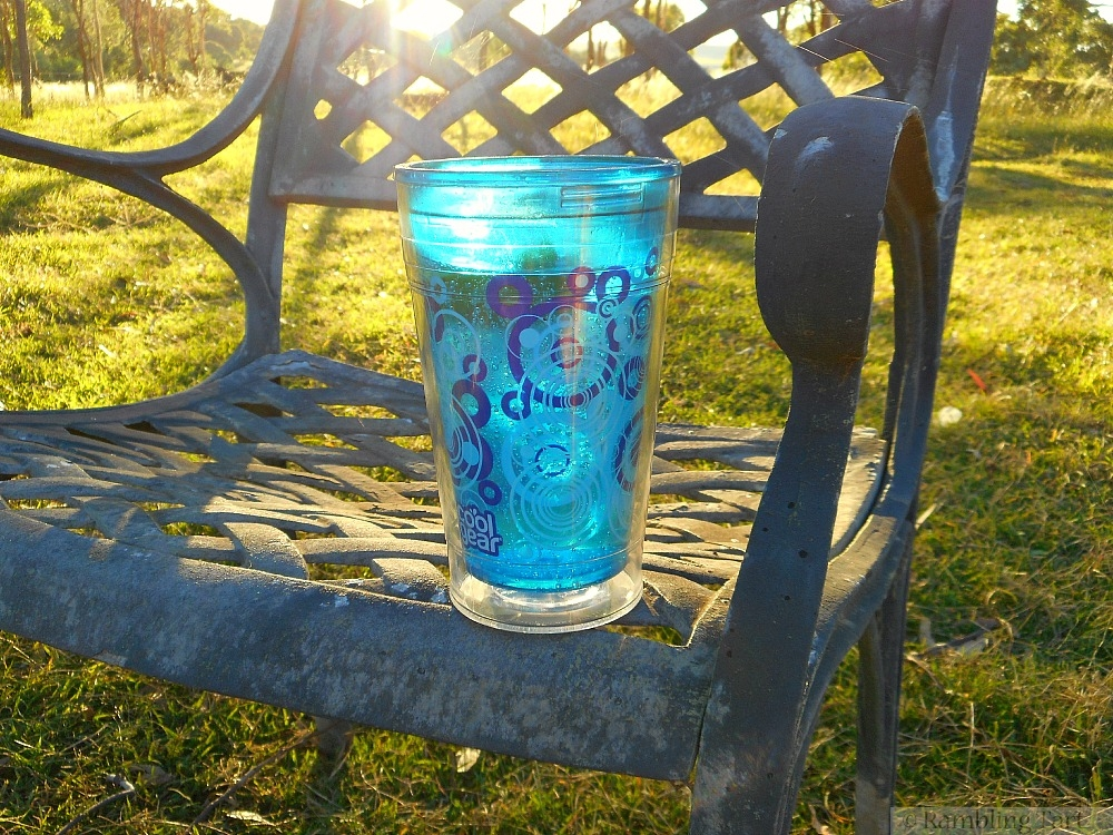 sunlight through cup
