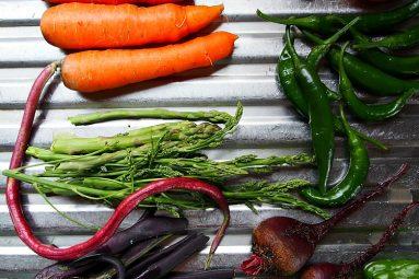 washed garden vegetables