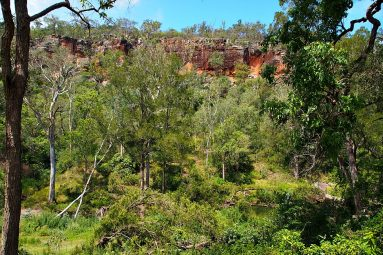 red cliffs at Cania Gorge