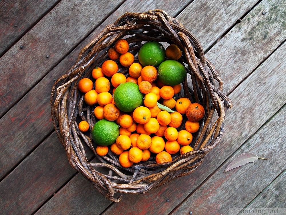 basket of kumquats