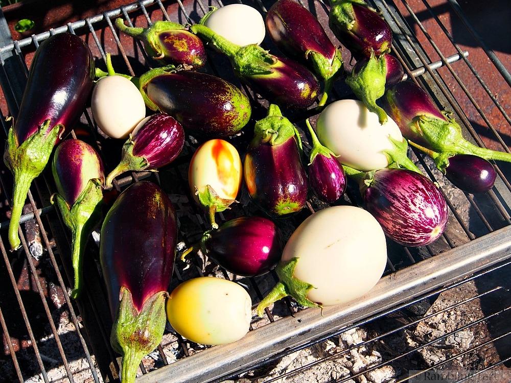 fire roasting eggplant