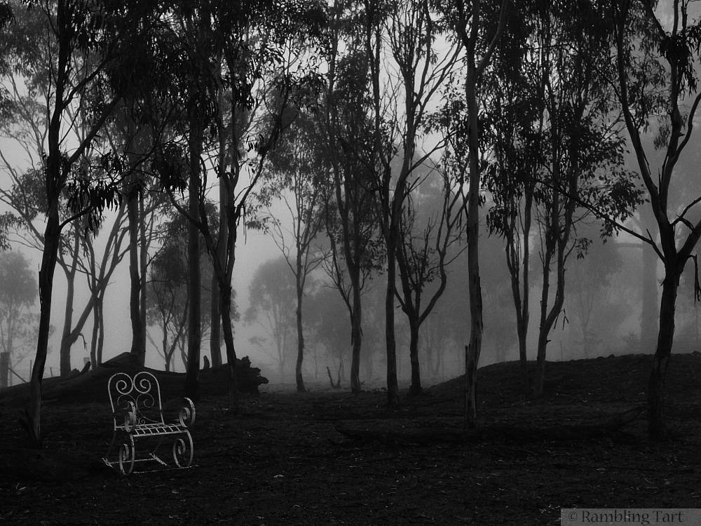 fog white chair