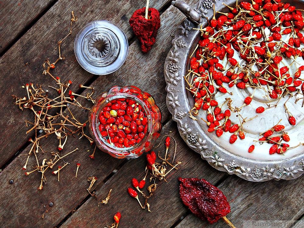 chipotle pepper vinegar recipe