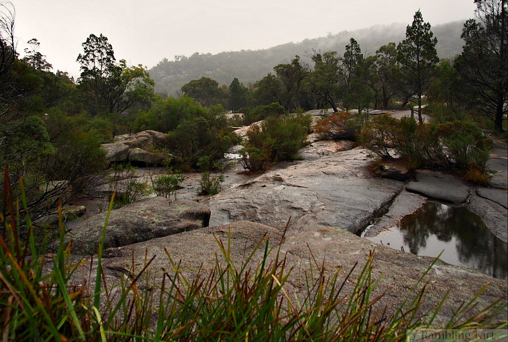 rain at Girraween National Park