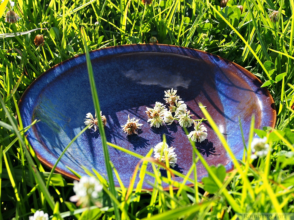 bowl white clover