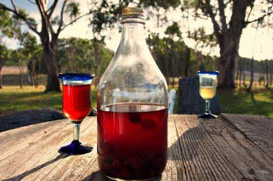 port wine with cherries