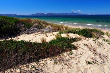 white sand beach Tasmania